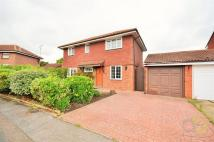 Detached property for sale in Comfrey Court, Grays
