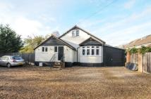 Detached home in Ferry Lane, Shepperton...