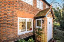 Rosemary Lane House Share