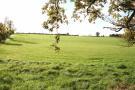 Farm Land in Westmeath, Mullingar for sale