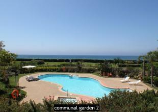 communal garden 2