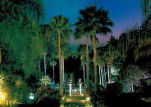 Tropical Garden at n