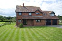 Detached house to rent in Priory Farm Lane, WR7