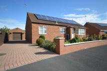 Bungalow for sale in Sandpiper Close, Filey...