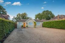 Bungalow for sale in Cheyne Walk, Horley...