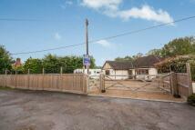 4 bedroom Bungalow for sale in Lone Oak, Smallfield...