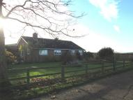 Detached Bungalow in Crutch Lane, Elmbridge...