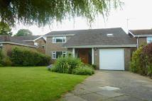Detached home in Batts Drive, Henfield