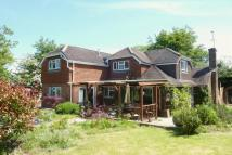 Detached home for sale in Blackgate Lane, Henfield
