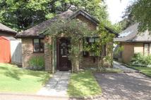 Bungalow for sale in Oak Lane, Sevenoaks
