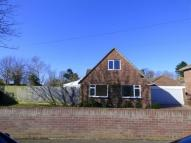 Detached Bungalow in Roundhayes Close...