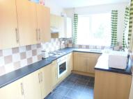 4 bedroom semi detached house to rent in FourBedStudent House...