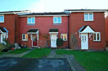 Linnet Close Terraced property to rent