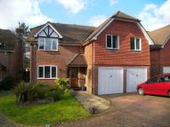 Detached property to rent in Rake Road, Liss