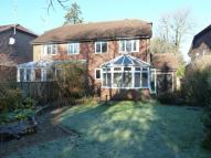 3 bedroom semi detached home to rent in Crowborough