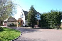 Detached property to rent in Orsett Village