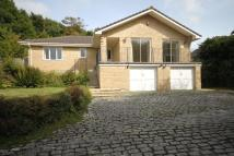 Bungalow in Old Well Gardens, Penryn