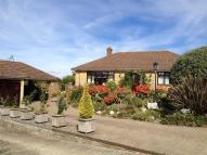 Detached Bungalow for sale in Buckbury Close, Newport...