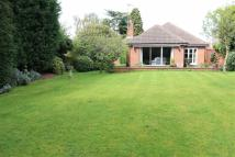 Powys Gardens Bungalow for sale