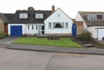 Bungalow for sale in Uppingham Road...