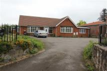 Bungalow for sale in Uppingham Road, Evington...