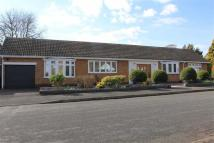 Bungalow for sale in Southernhay Close...