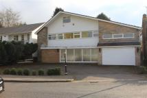 Detached home for sale in Ringers Close, Oadby...