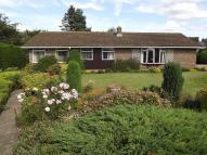Five Acres Bungalow for sale