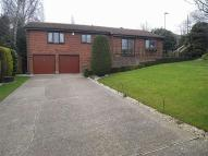 Detached Bungalow for sale in Willow Beck, Notton...