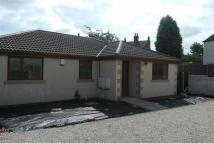 Detached Bungalow for sale in Mill Lane, Ryhill...