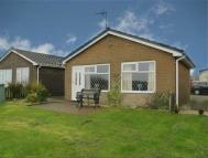 Dolphin Way Detached Bungalow for sale