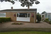3 bed Semi-Detached Bungalow to rent in Cherry Grove, Gamlingay...