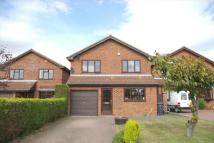 Detached house for sale in Powers Close, SANDY...