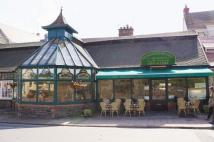 Restaurant in The Greenhouse for sale
