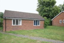 3 bed Detached Bungalow to rent in Church Road, Bookham