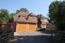 5 bed Detached home in The Avenue, Tadworth