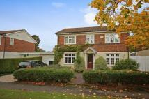 Link Detached House for sale in ASHTEAD