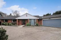 ASHTEAD Detached Bungalow for sale