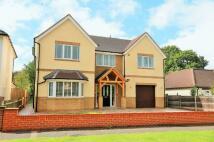 ASHTEAD new property for sale