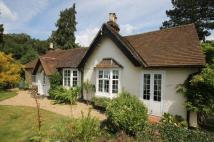 DORKING Detached Bungalow for sale