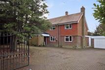 Detached house for sale in OCKLEY/BEARE GREEN...