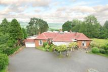 Detached Bungalow for sale in DORKING