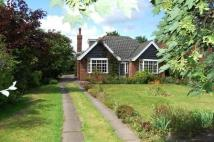 4 bed Detached Bungalow in Manor Drive, Waltham...
