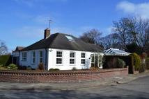 Detached Bungalow for sale in Augusta Close, Grimsby...
