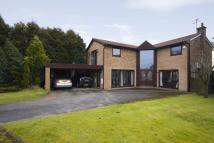 4 bedroom Detached property in Meadowcroft, Whitefield...