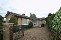 3 bedroom Detached Bungalow for sale in The Holmes, Littleport