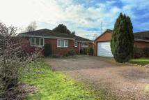 Detached Bungalow for sale in Houghton Gardens, Ely