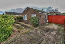 Semi-Detached Bungalow for sale in Trinity Close, Fordham