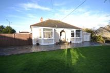 Detached Bungalow in Threemilestone