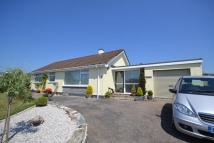 3 bedroom Detached Bungalow in Carnon Downs